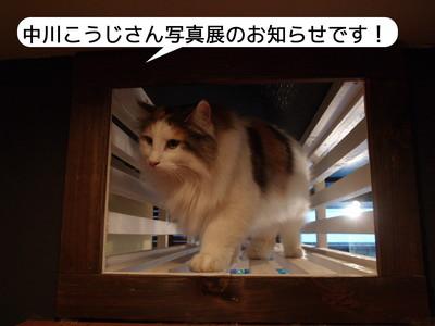 20080323_151758.jpg