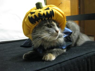 3.うそー!王女にかぼちゃは似合わないの!.JPG