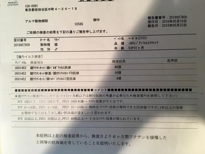 D9FA26EB-C95D-40C4-ADCC-A8287630EC6B.jpeg